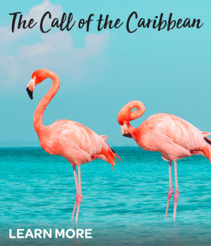 Transformative Journeys and Destinations